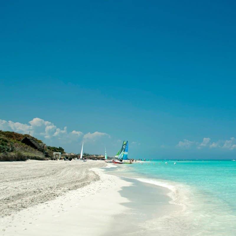Shore of a beach